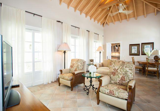 Villa in Terres Basses - Chateau des Palmiers