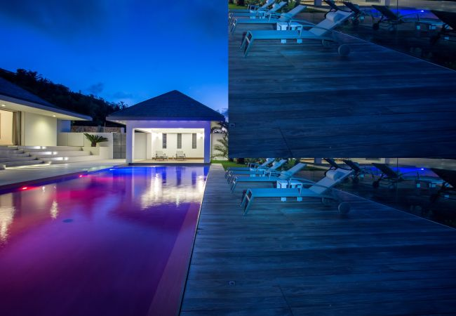 Villa in Saint Barthélemy - Wine Note