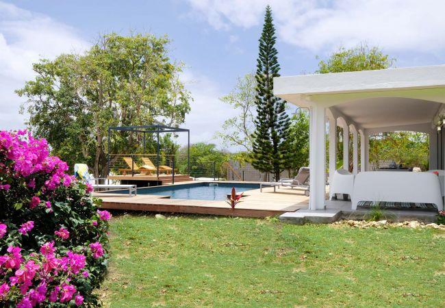 Villa in Saint-François - Christelle