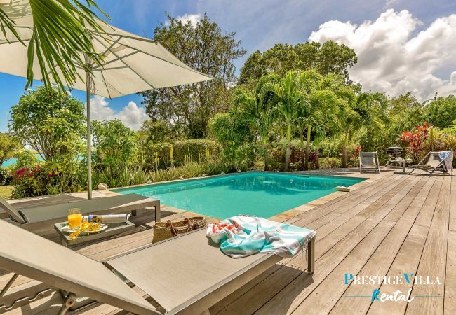 Villa in Le Vauclin - Blue Palm